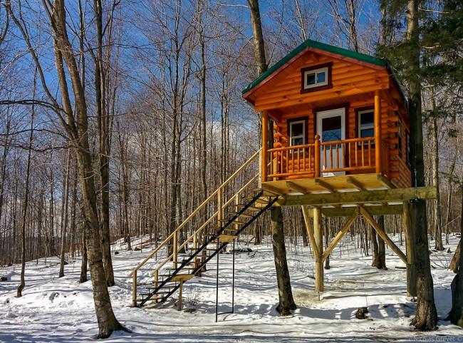 Blog evologica - Casa sugli alberi ...